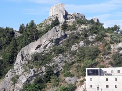 Projekt sanacije tvrđave Fortica